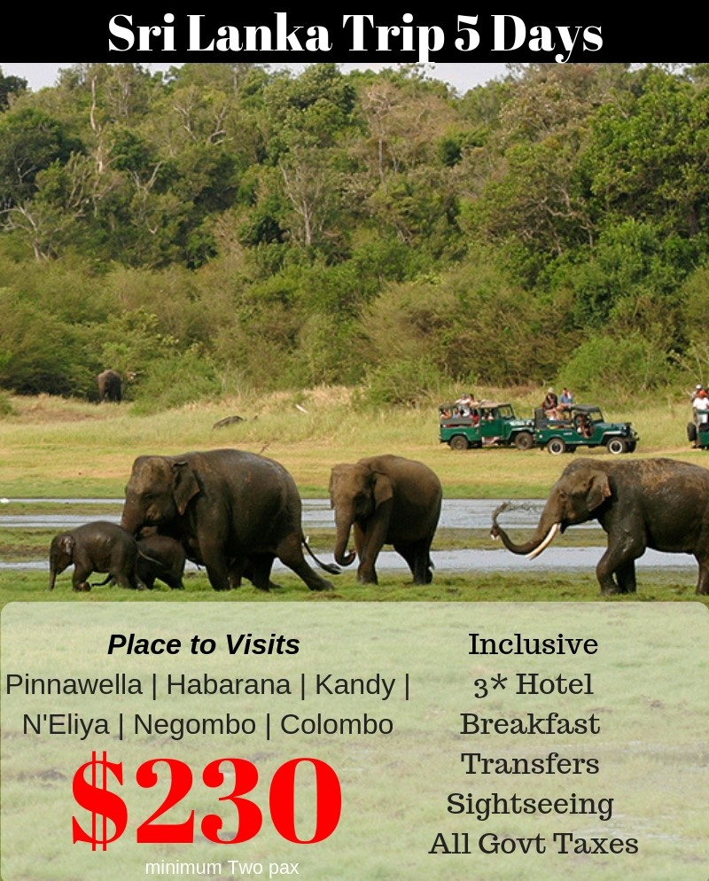 Srilanka tour from Bangalore